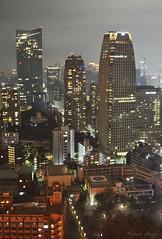 Tokyo night view (DameBoudicca) Tags: tokyo tokio 東京 japan nippon nihon 日本 japón japon giappone shiba 芝 東京都港区 tokyotower 東京タワ shibakōen 芝公園 港区 minato shibapark natt night nacht nuit notte noche 夜