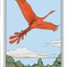 El Ave del Paraíso / The Bird of Paradise