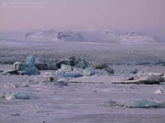 Sapphires of Vatnajökull (right2roam) Tags: jökulsárlón glacial glacier lagoon lake iceland south arctic arcticcircle winter seascape landscape vatnajokull nationalpark ice snow frozen blue pastel right2roam vatnajökull ringroad jokulsarlon