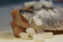 Hollandse Nieuwe / Dutch brined herring (Ronaldc5) Tags: sony a99ii sal100m28 macromondays gonefishing