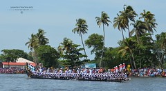Alleppey Boat Race (Jaimon Chackalayil) Tags: alleppy kuttanadu boatrace snakeboat alappuzha keralatourisom kerala nehrutrophy nikond7000