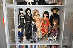 Current BJD collection! July 2019 (ame_hime__) Tags: bjd ball jointed doll super dollfie peakswoods volks soom popodoll little monica supiadoll migidoll spiritdoll crobidoll fairyland leaves