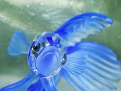 Crystal Fish (phayes88) Tags: macromondays gonefishing crystal swarovski fish