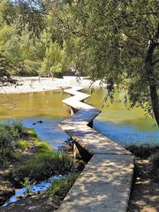 Pasarelas del Arga-La Magdalena-Iruña (eitb.eus) Tags: eitbcom 20267 g1 tiemponaturaleza tiempon2019 nafarroa pamplonairuña txelofernández