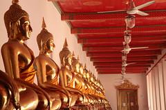 Bevy Of Buddhas (peterkelly) Tags: digital canon 6d asia southeastasia thailand indochinaencompassed gadventures watpho bangkok templeoftherecliningbuddha golden gold statue staue red encarnado hall corridor ceiling fan happyplanet asiafavorites