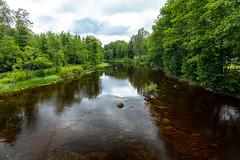 Enningdal river (Thor Edvardsen) Tags: enningdalselven enningdalriver canon canon5dsr ef24105mmf4lisusm river stream sverige sweden view norway norge nature nordic