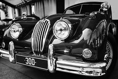 Jaguar (laurent.triboulois) Tags: cars voiture jaguar exception ville city paris blackanwhite
