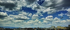 20190517_DP0Q8971-21x9-mod (NAMARA EXPRESS) Tags: 21x9 landscape sky cloud nature town plane airplane aeroplane jetplane spring morning fine outdoor color foveonclassicblue toyonaka osaka japan spp spp661 foveon x3 sigma dp0 quattro wide ultrawide superwide namaraexp