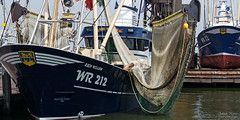 The Human Factor (Johan Konz) Tags: dutch fishing fleet new shrimp kotter motorkotter wr12 wr212 boat ship harbor denoever wieringen waddensea netherlands shipdock quay humanfactor people maintenance painting painter fisherman drying cleaning net modern technology built 2017 delivered 2018 sisterships