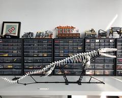 Mosasoraurus skeleton brought alive by another afol (Yobb Rschp) Tags: lego mosasaurus skeleton fossil moc afol dino dinosaur display