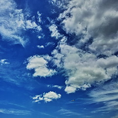 20190521_DP0Q9018-1x1-mod (NAMARA EXPRESS) Tags: sky cloud color nature japan landscape spring outdoor fine wide sigma osaka daytime ultrawide foveon quattro toyonaka x3 superwide spp dp0 namaraexp foveonclassicblue spp661 blue 1x1