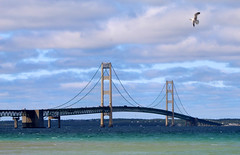 mackinac bridge (brown_theo) Tags: mackinaw city mackinac bridge upper peninsula up michigan lake summer