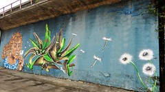 Albione & Veks / Charleroi - 12 jul 2019 (Ferdinand 'Ferre' Feys) Tags: charleroi belgium belgique belgië streetart artdelarue graffitiart graffiti graff urbanart urbanarte arteurbano ferdinandfeys