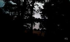 El primer día quería tener un vistazo al mar al anochecer, Bahía Drake/ The first day I wanted to have a look at the ocean before it got dark. Drake Bay, Osa (vantcj1) Tags: playa mar oceáno cielo penumbra anochecer viaje caminata agua silueta bosque selva árboles vegetación naturaleza luces