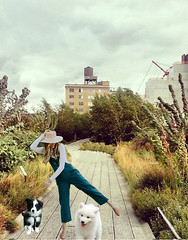 high line 2 (ladybumblebee) Tags: digitalart digitalcollage contemporarywomenartists collage digitalpainting