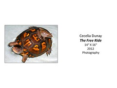 """The Free Ride • <a style=""""font-size:0.8em;"""" href=""""http://www.flickr.com/photos/124378531@N04/48323745336/"""" target=""""_blank"""">View on Flickr</a>"""