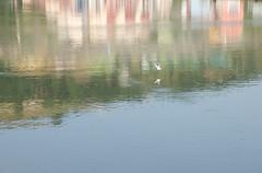 DSC_8458 (adrizufe) Tags: reflections laria bilbao water nikon d7000 ngc nature aplusphoto adrizufe adrianzubia ilovenature basquecountry