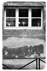 (Jean-Luc Léopoldi) Tags: bw noiretblanc fenêtre coupes trophées championnat mur barrière decay