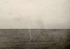 The Sea (justin.syndercombe) Tags: film filmisnotdead darkroom mpp microtechnical abusednegative sea merseaisland
