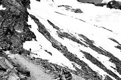 Staffal - Capanna Città di Mantova - Capanna Margherita 4554m (Photo by Lele) Tags: monte rosa staffal aosta valle daosta bn bw maini daniele fotografia photo montagna mountain panorama landscape ticino switzerland tessin suisse svizzera escursione paesaggio paesage nature natura alps alpi alpen photography escursioni trekking excursion hiking tourism turismo vacanze vacanza holiday tour trip fotografo schweiz adventure di flickr foto ticinoturismo fotografiadimontagna alta quota photographie panoramica vendita immagini acquisto fotografie capanna margherita
