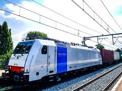 DB Cargo Nederland 186 501 met 'Evergreen' containertrein @ Eindhoven (Avinash Chotkan) Tags: br186 traxx bombardier trains railpool dbcargo dbcargonederland thenetherlands evergreen containers 186501