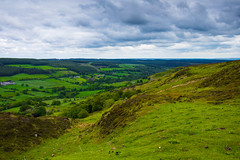 A cold day in June on the North Yorkshire Moors (Geordie_Snapper) Tags: blakeyridge canon2470mm cloudywithsomesun coldday june landscape moors northyorkshiremoors outdoors summer