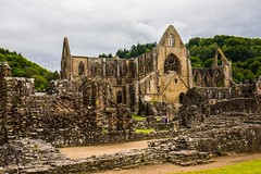 The ancient Tintern Abbey vandilsed by King Henry VIII and Thomas Cromwell (Geordie_Snapper) Tags: canon5d4 canon2470mm forestofdean june landscape summer tintern tinternabbey