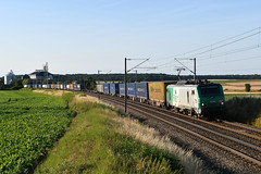DSC_8594 (JCOuria) Tags: gannes stjory dourgesd3 bb27000 fret sncf