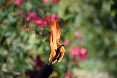 DSC_7571 (griecocathy) Tags: macro fil cuivre flamme fumer chalumeau vert rose jaune noir oranger gris