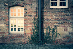 Gesehen auf Schloss Herten (manganite) Tags: nikkorz2470mmf4s nikon nikonz nikonz6 z6 architecture buildings burg castle deutschland dslm europa europe frühling fullframe gebäude germany herten jahreszeiten mirrorless nikkor nordrheinwestfalen northrhinewestphalia nrw ruhrgebiet ruhrpott schlossherten schlossparkherten season seasons spring xpro manganite lightroom f40 iso100 33mm 2019