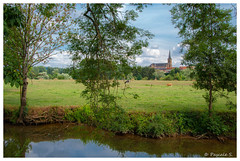 Campagne (Pascale_seg) Tags: paysage landscape campagne country countryscape field prairie moselle lorraine grandest france nikon ruisseau champs été summer estate albero arbre tree