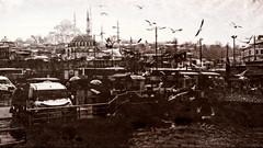 Istambul moment (Miradortigre) Tags: turquia turkey istambul estambul puerto port harbour galata bridge seagulls city winter ciudad invierno