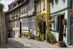 Gasse in Quedlinburg (Marcus' Pictures) Tags: quedlinburg sachsenanhalt deutschland