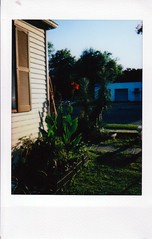 IMG_20190719_0001 (merrybelletrist) Tags: instax7s instaxmini instax instant
