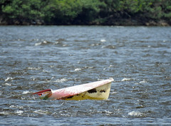 A derelict kayak on the Ottawa River stuck on the Remic Rapids in Ottawa, Ontario (Ullysses) Tags: derelict junked kayak kayaking ottawariver rivièredesoutaouais ottawa ontario canada summer été remicrapids closeup zoom