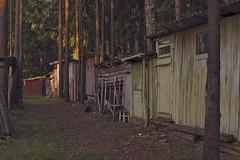 Backyard. (Khuroshvili Ilya) Tags: forest town backyard sun woods shed barn outhouse woodshed outdoors summer