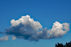 Clouds. (dccradio) Tags: lumberton nc northcarolina robesoncounty outdoor outdoors outside nature natural july friday summer summertime fridayevening evening goodevening nikon d40 dslr cloud clouds sky bluesky cloudformation tree trees treetops branch branches treebranch treebranches