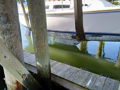 Boat Launching the Easy Way (Ceorl) Tags: boat launch sailboat newengland marina