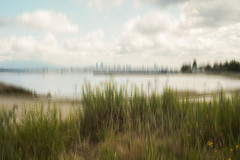 Beach of Vancouver (Photo Alan) Tags: vancouver city cityscape cityofvancouver water clouds cloud grass