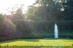 Central Park (Edgar.Omar) Tags: nyc centralpark fountain pentax pentaxa5028macro goldenhour park green gold yellow