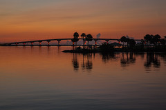 A. Max Brewer Bridge - Titusville, FL (in Explore) (mimsjodi) Tags: saturdayselfchallenge water bridge sunrise palmtree titusvillefl indianriverlagoon sky reflections clouds silhouette