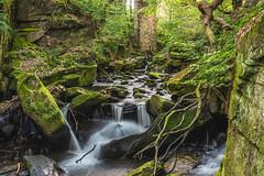 Chaos (mynameisblank!) Tags: waterfall water trees nature green longexposure nikon nikond810 lancashire england uk summer healydell rochdale