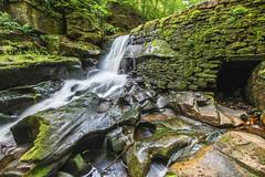 Gotta pay the troll (mynameisblank!) Tags: waterfall water trees nature green longexposure nikon nikond810 lancashire england uk summer healydell rochdale