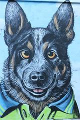 one of Jack's Dogs (Gillian Everett) Tags: mural eumundi queensland jacksdogs johnmurray 365 2019