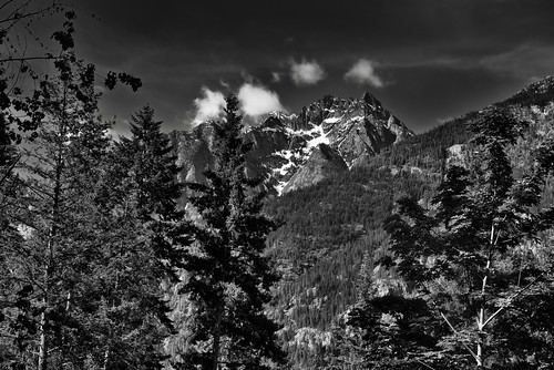 Castle Rock and Mountain Peaks Just Beyond the Trees (Black & White, North Cascades National Park Service Complex)