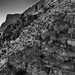 A Look Across a Wall of Rocks to the Sierra Ponce Cliffs  (Black & White, Big Bend National Park)