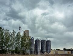 Palouse 2019_Stormy Day (Barking Dog Photos_Bruce Gregory) Tags: steptoe wa