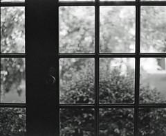(Fujifilm GF670 & Ilford Delta 400) (Cecilia Temperli) Tags: fujifilmgf679 ilforddelta400 trialshot bw mediumformat mf film