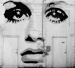 Back Alley Mural.jpg (Thomas Gremaud) Tags: mural nose face film doors alley eyes lips stpetersburgfl backalley monochrome publicart 35mmfilm