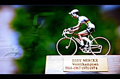 2019 MM8 A journey through the career of the Cannibal (Sallanches 1964) Tags: worldchampionroadcycling eddymerckx rainbowjersey merckxissimo merckx525 iconofcycling thegreatest thecannibal